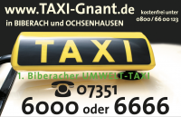 Taxi Gnant